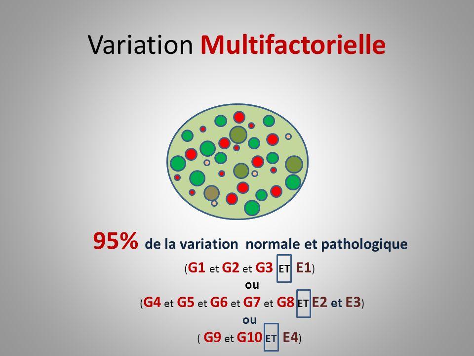 Variation Multifactorielle ( G1 et G2 et G3 ET E1 ) ou ( G4 et G5 et G6 et G7 et G8 ET E2 et E3 ) ou ( G9 et G10 ET E4 ) 95% de la variation normale e