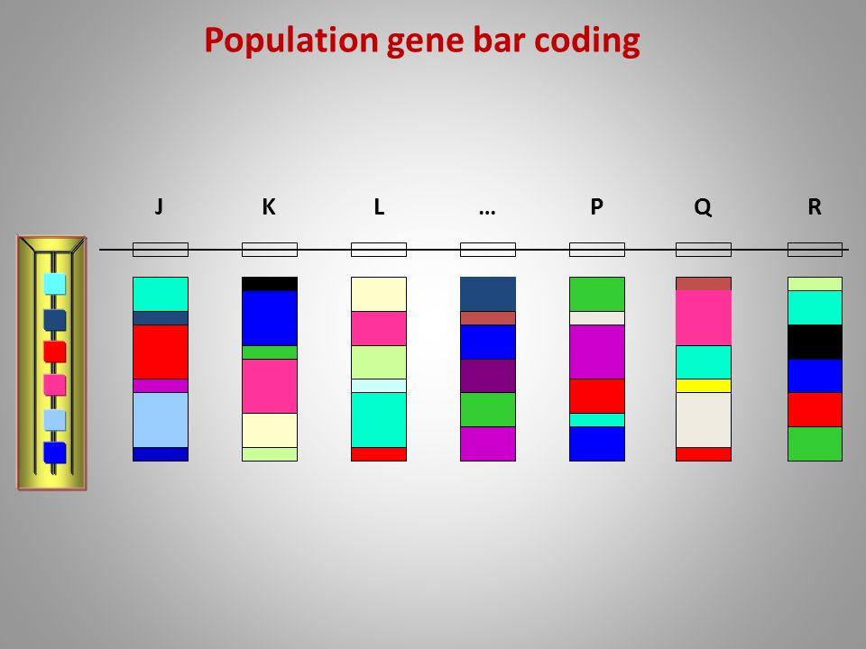 Population gene bar coding JKL…PQR