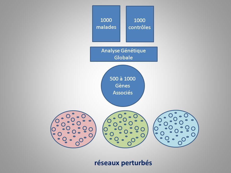 1000 malades 1000 contrôles Analyse Génétique Globale 500 à 1000 Gènes Associés réseaux perturbés
