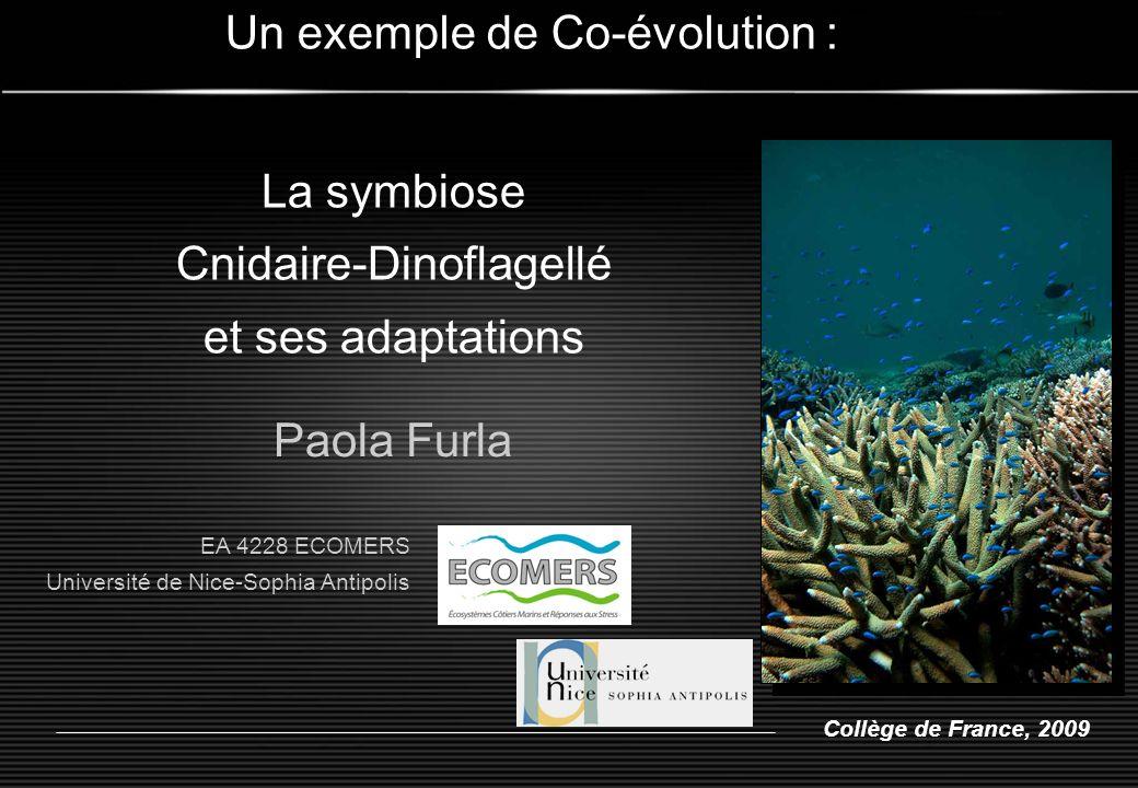 Collège de France, 2009 EA 4228 ECOMERS Université de Nice-Sophia Antipolis Paola Furla La symbiose Cnidaire-Dinoflagellé et ses adaptations Un exempl