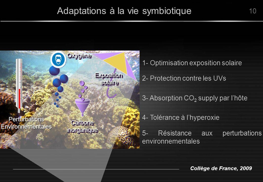 Collège de France, 2009 Adaptations à la vie symbiotique 3- Absorption CO 2 supply par lhôte 1- Optimisation exposition solaire 4- Tolérance à lhypero