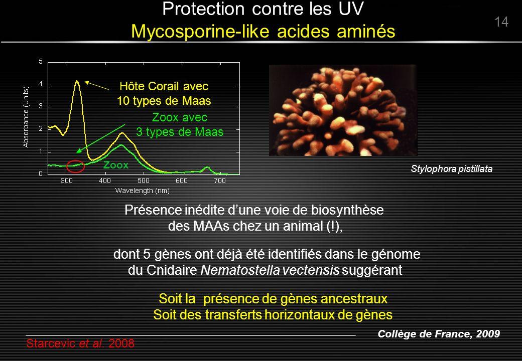 Collège de France, 2009 Zoox Stylophora pistillata 14 Protection contre les UV Mycosporine-like acides aminés Hôte Corail avec 10 types de Maas Zoox a