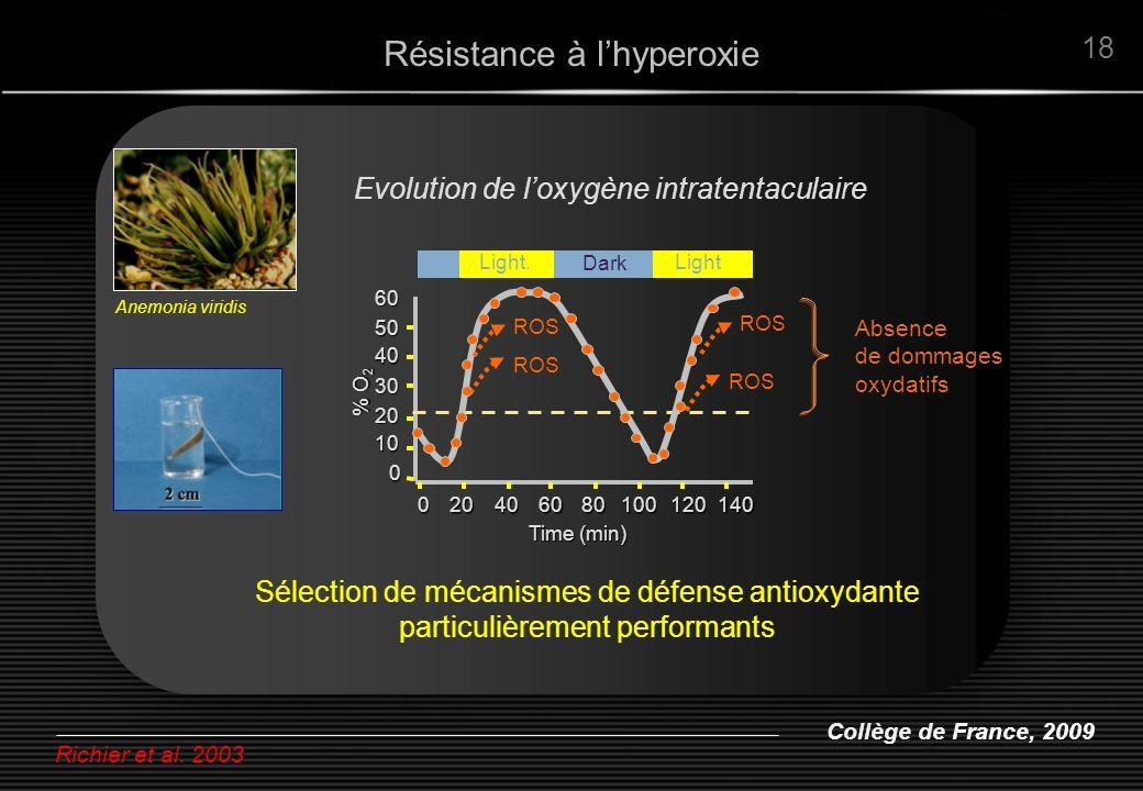 Collège de France, 2009 18 Evolution de loxygène intratentaculaire Richier et al. 2003 Résistance à lhyperoxie Anemonia viridis 140 120 100 80 60 40 2