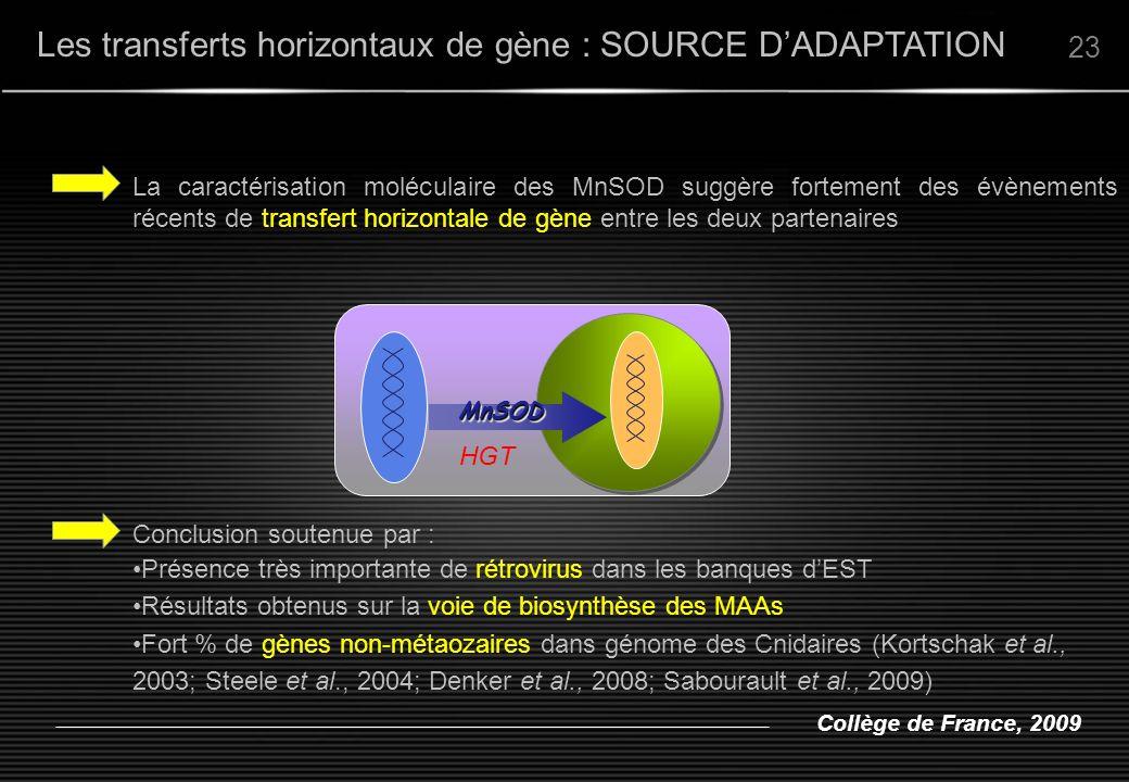Collège de France, 2009 Les transferts horizontaux de gène : SOURCE DADAPTATION 23 La caractérisation moléculaire des MnSOD suggère fortement des évèn