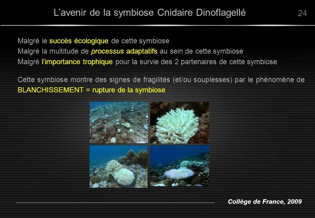 Collège de France, 2009 Lavenir de la symbiose Cnidaire Dinoflagellé 24 Malgré le succès écologique de cette symbiose Malgré la multitude de processus