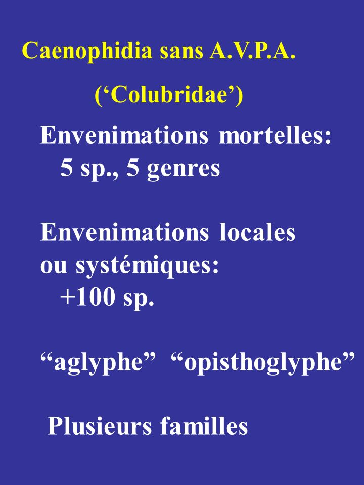 Venimosité Modèles mammaliens inadéquats Autres indices: Cellules séreuses Denture max.