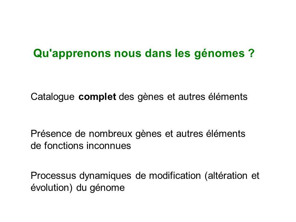 Qu'apprenons nous dans les génomes ? Catalogue complet des gènes et autres éléments Présence de nombreux gènes et autres éléments de fonctions inconnu