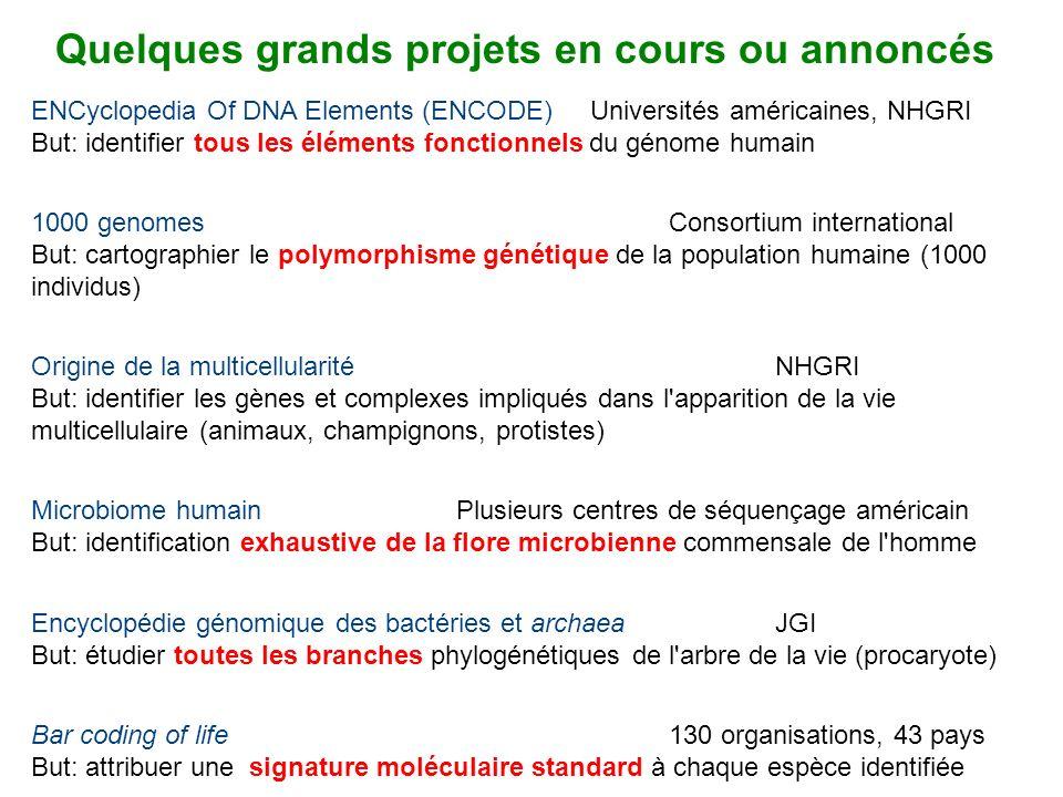 Quelques grands projets en cours ou annoncés 1000 genomes Consortium international But: cartographier le polymorphisme génétique de la population huma