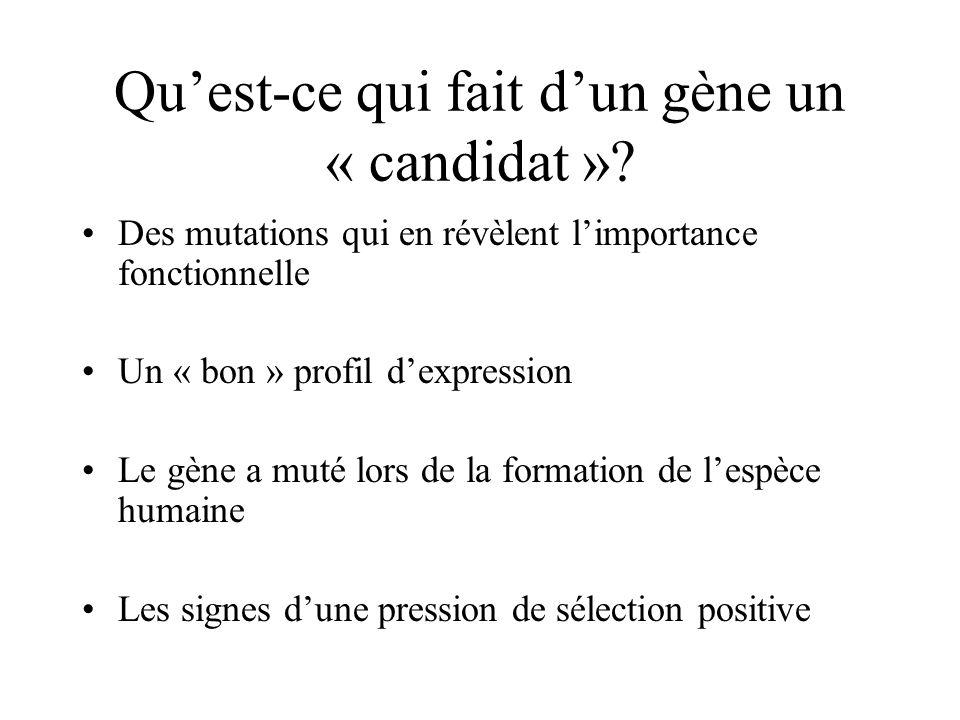 Quest-ce qui fait dun gène un « candidat »? Des mutations qui en révèlent limportance fonctionnelle Un « bon » profil dexpression Le gène a muté lors