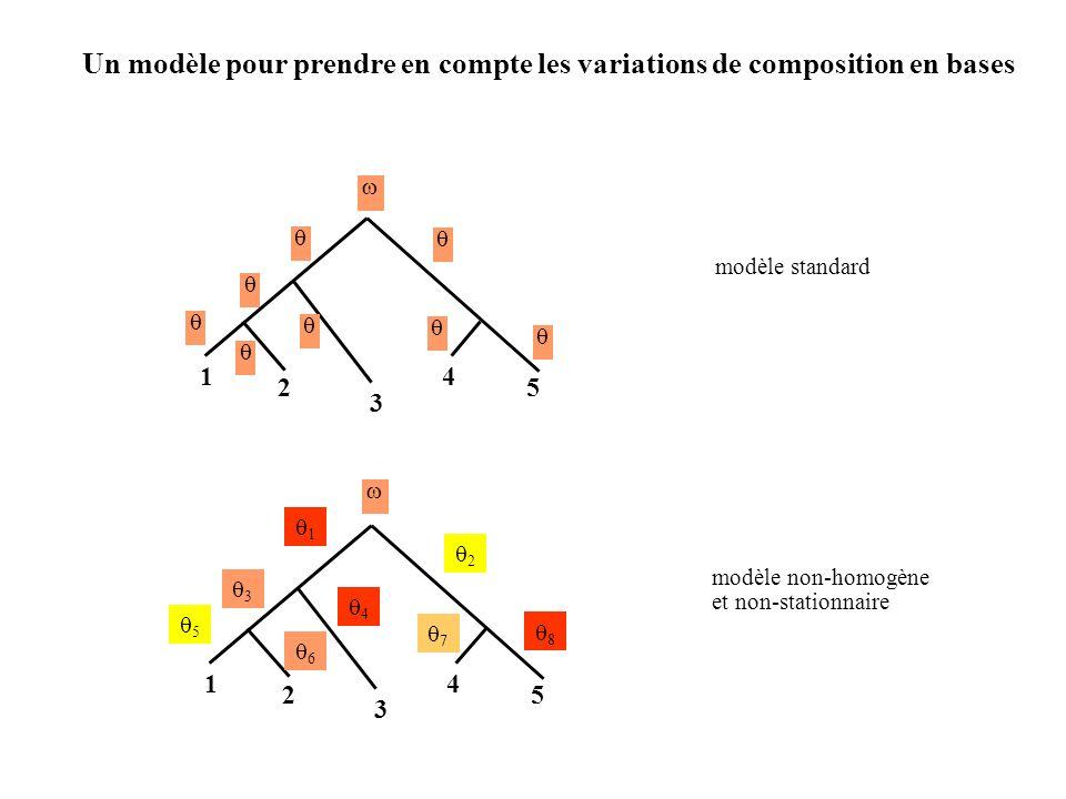 1 2 3 4 5 modèle standard 1 2 3 4 5 modèle non-homogène et non-stationnaire 1 2 4 7 3 5 8 6 Un modèle pour prendre en compte les variations de composition en bases