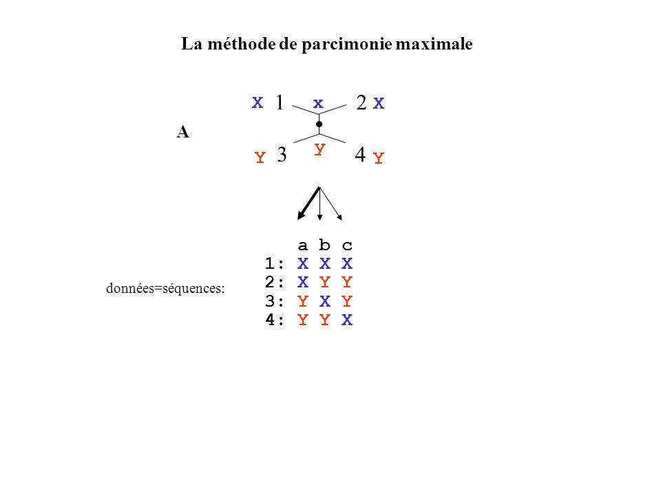 La méthode de parcimonie maximale 12 3 4 a b c 1: X X X 2: X Y Y 3: Y X Y 4: Y Y X données=séquences: 12 3 4 x x X Y Y X A