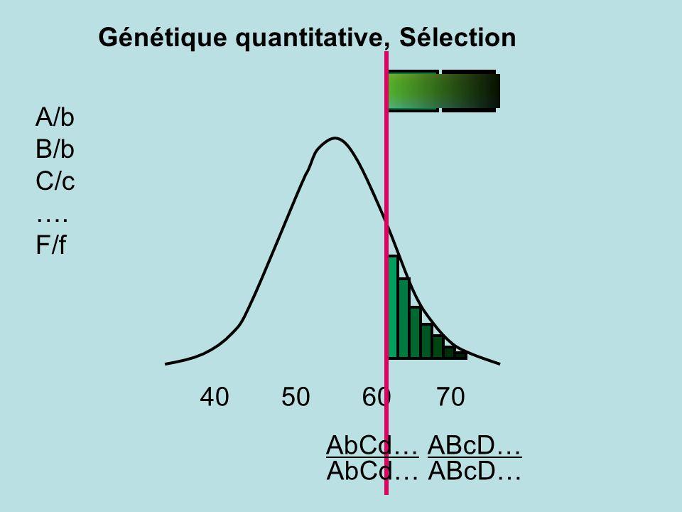 ABcD… A/b B/b C/c …. F/f 40 50 60 70 ABcD… AbCd… Génétique quantitative, Sélection
