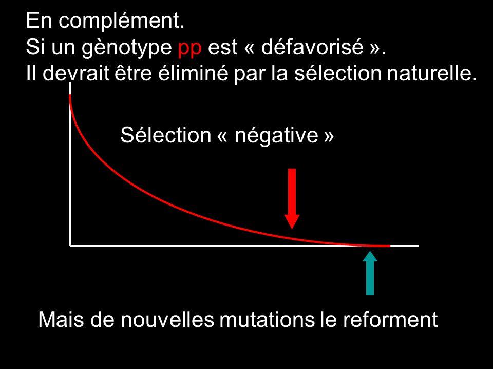 En complément. Si un gènotype pp est « défavorisé ». Il devrait être éliminé par la sélection naturelle. Sélection « négative » Mais de nouvelles muta