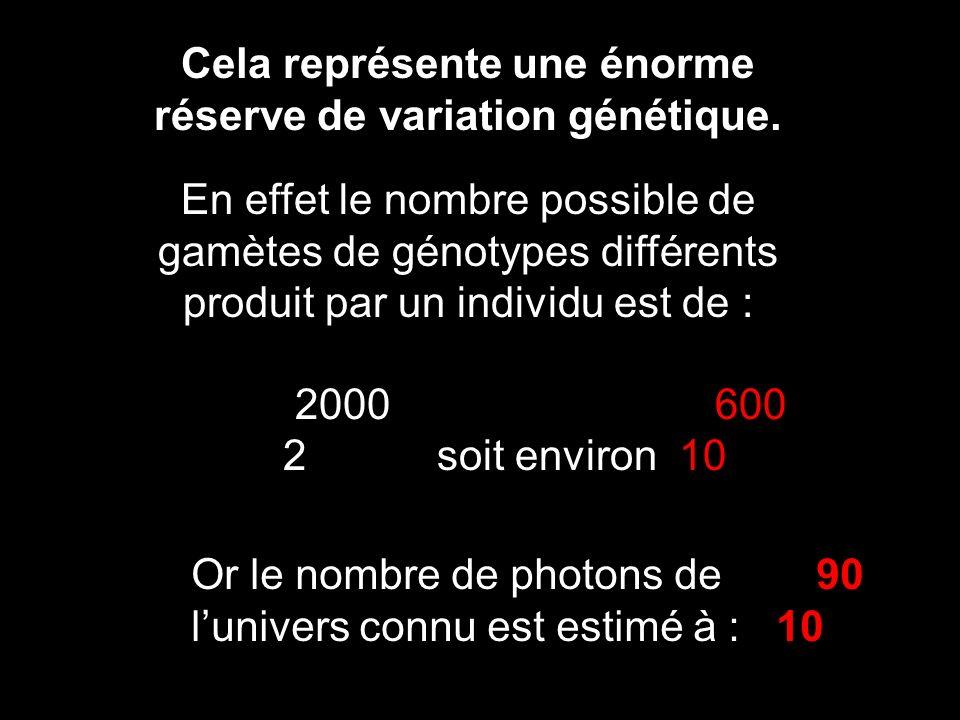 Cela représente une énorme réserve de variation génétique. En effet le nombre possible de gamètes de génotypes différents produit par un individu est