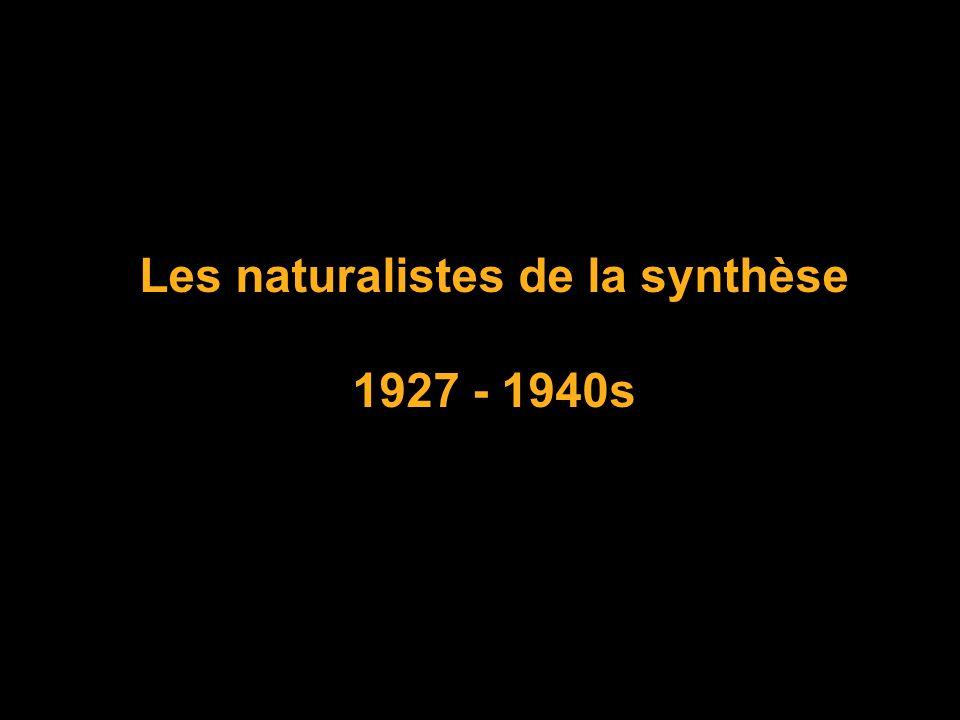 Les naturalistes de la synthèse 1927 - 1940s