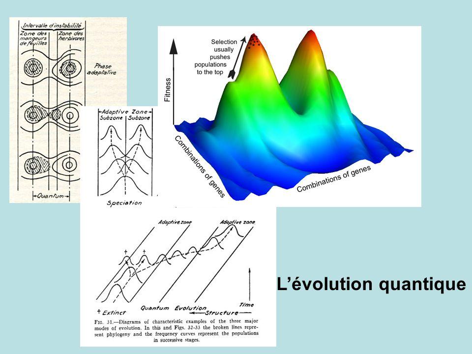 Lévolution quantique