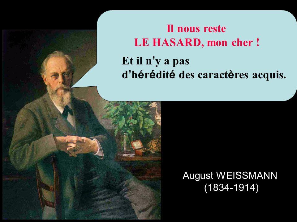 Il nous reste LE HASARD, mon cher ! August WEISSMANN (1834-1914) Et il n y a pas d h é r é dit é des caract è res acquis.