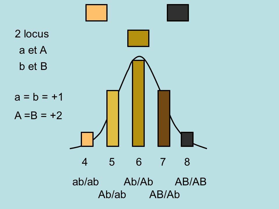 SUPERESPECE Drosophila paulistorum Interstérilité + ou - forte entre «sous-espèces » La spéciation en cours