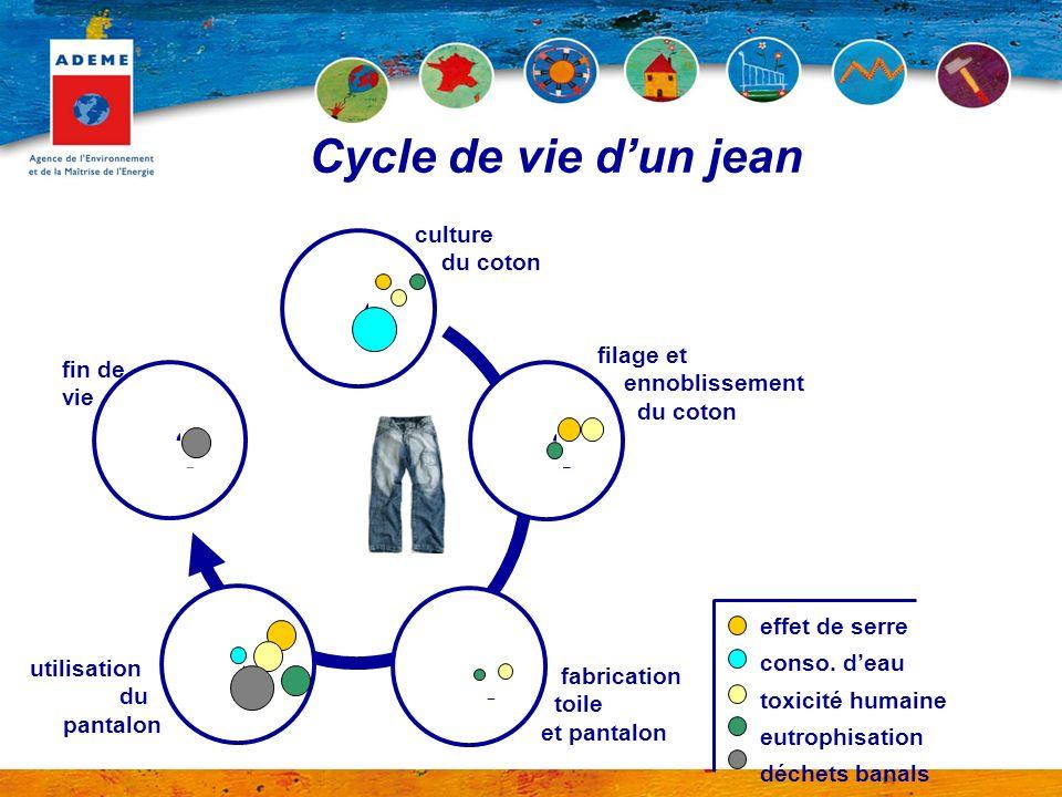 Cycle de vie dun jean culture du coton fin de vie filage et ennoblissement du coton fabrication toile et pantalon utilisation du pantalon effet de ser