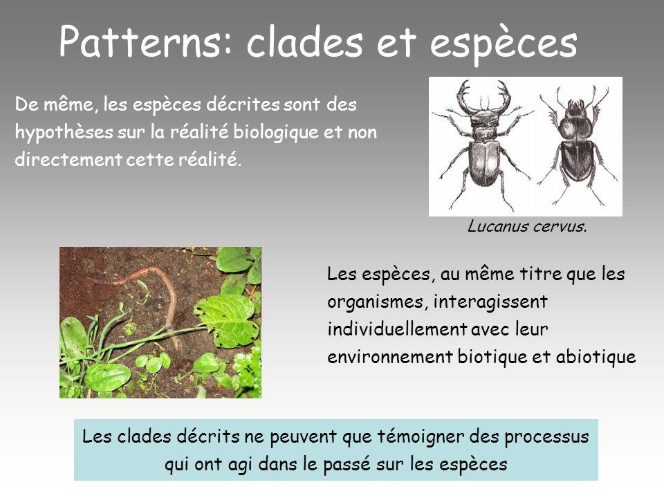 Patterns: clades et espèces De même, les espèces décrites sont des hypothèses sur la réalité biologique et non directement cette réalité.