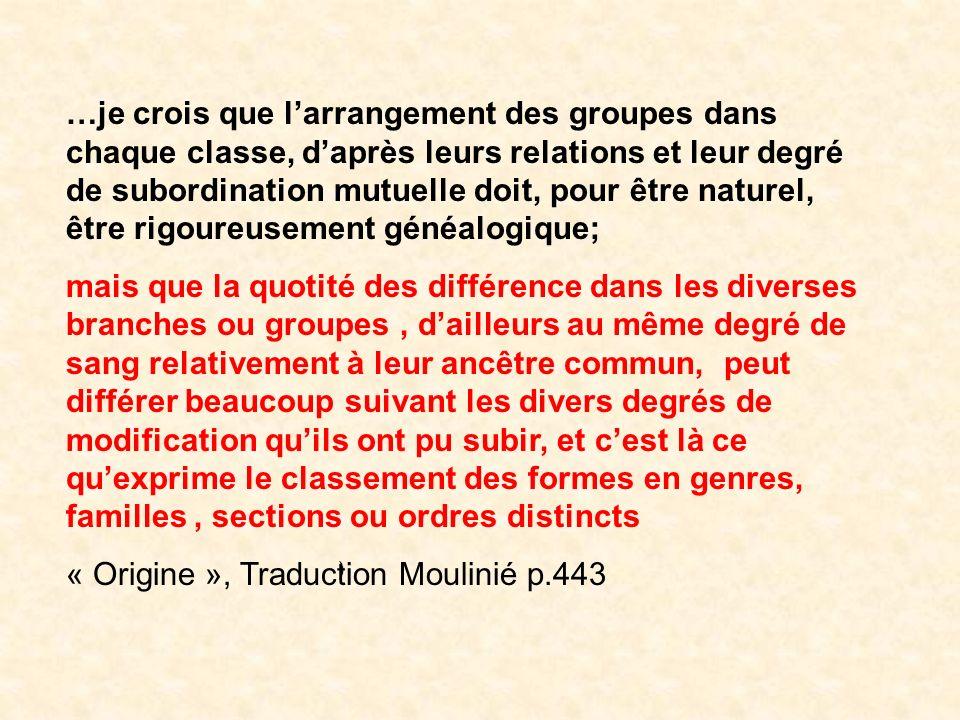 Classification texte ) …je crois que larrangement des groupes dans chaque classe, daprès leurs relations et leur degré de subordination mutuelle doit,