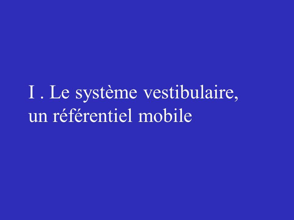 I. Le système vestibulaire, un référentiel mobile