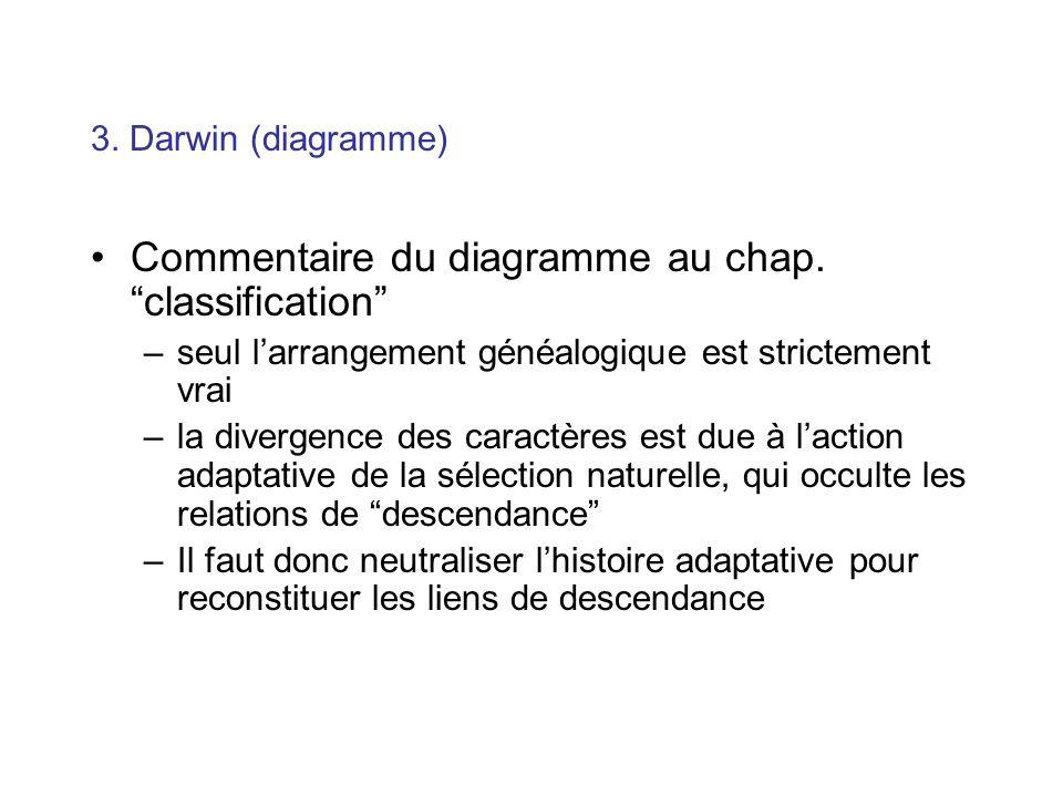 3. Darwin (diagramme) Commentaire du diagramme au chap. classification –seul larrangement généalogique est strictement vrai –la divergence des caractè