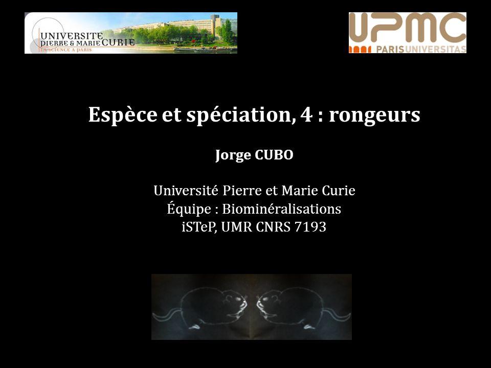 Espèce et spéciation, 4 : rongeurs Jorge CUBO Université Pierre et Marie Curie Équipe : Biominéralisations iSTeP, UMR CNRS 7193