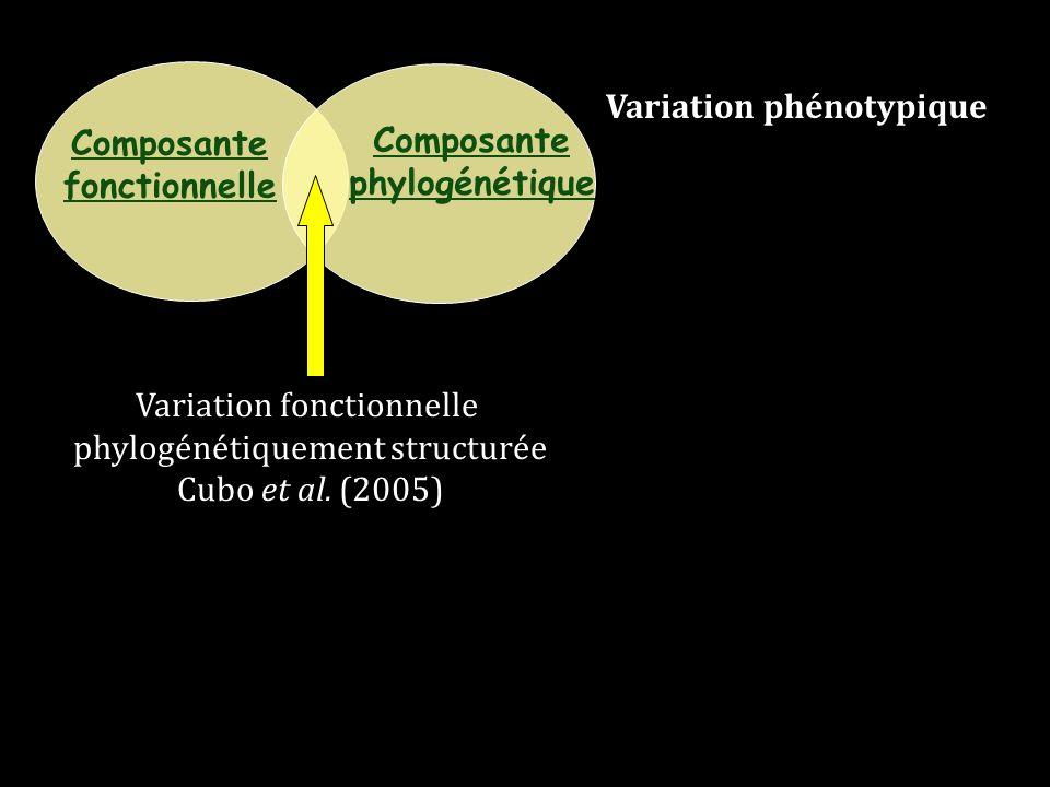 Composante fonctionnelle Composante phylogénétique Variation fonctionnelle phylogénétiquement structurée Cubo et al. (2005) Variation phénotypique