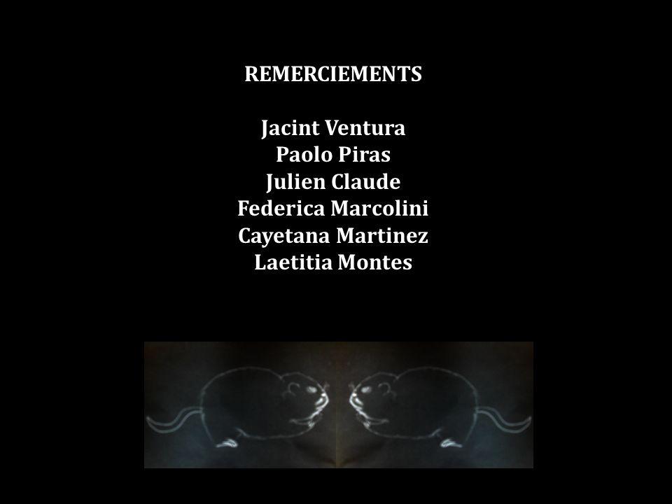 REMERCIEMENTS Jacint Ventura Paolo Piras Julien Claude Federica Marcolini Cayetana Martinez Laetitia Montes