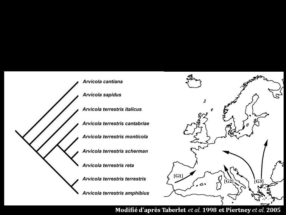 Modifié daprès Taberlet et al. 1998 et Piertney et al. 2005