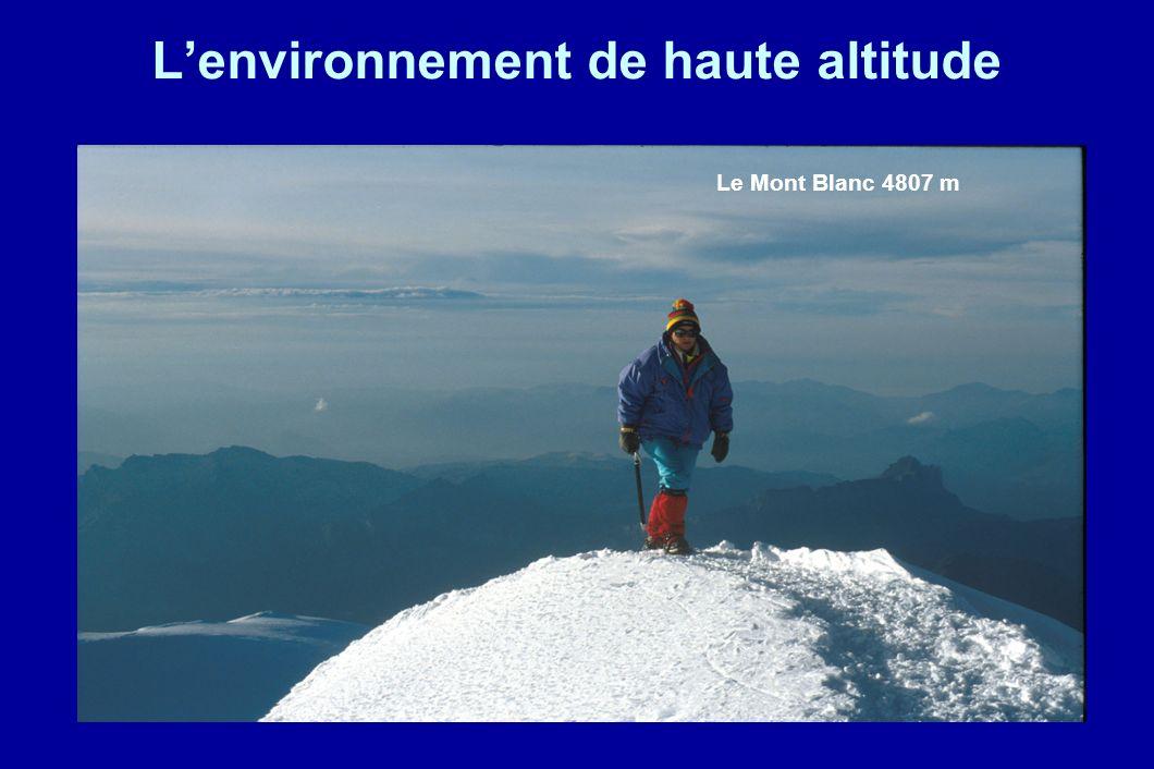 Lenvironnement de haute altitude Le Mont Blanc 4807 m