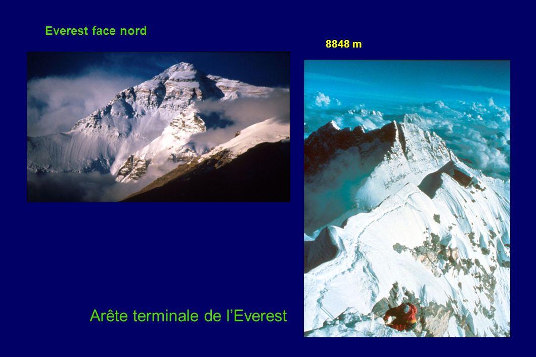 Everest face nord Arête terminale de lEverest 8848 m