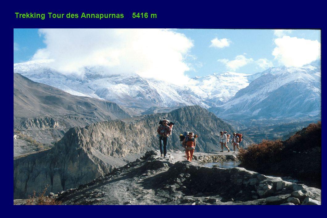 Trekking Tour des Annapurnas 5416 m