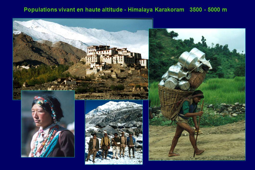 Populations vivant en haute altitude - Himalaya Karakoram 3500 - 5000 m