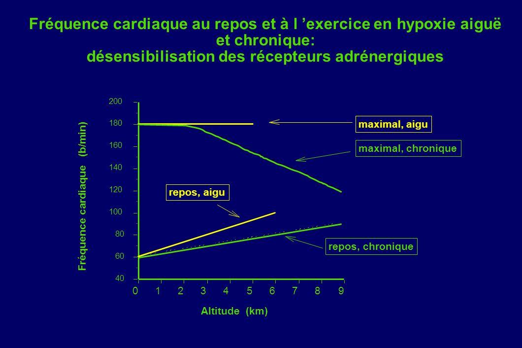 Fréquence cardiaque au repos et à l exercice en hypoxie aiguë et chronique: désensibilisation des récepteurs adrénergiques 40 60 80 100 120 140 160 18