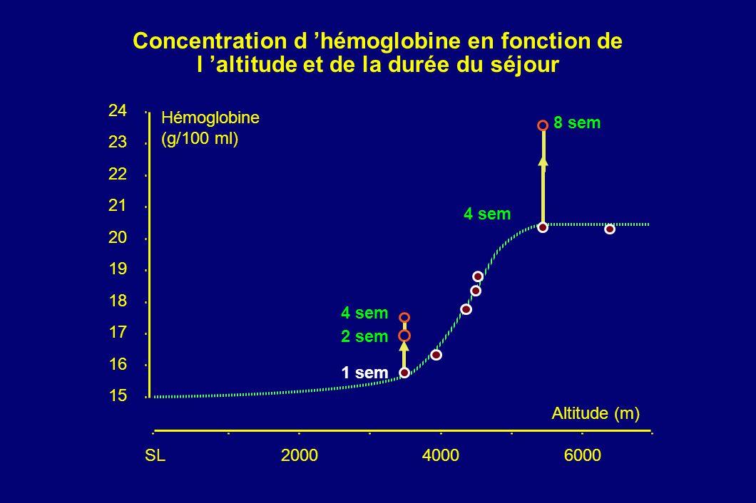 Concentration d hémoglobine en fonction de l altitude et de la durée du séjour 200040006000 8 sem 4 sem 2 sem 1 sem SL 15 16 17 18 19 20 21 22 23 24 H