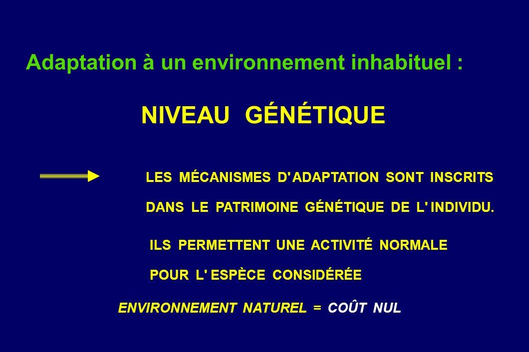 Adaptation à un environnement inhabituel : NIVEAU GÉNÉTIQUE LES MÉCANISMES D' ADAPTATION SONT INSCRITS DANS LE PATRIMOINE GÉNÉTIQUE DE L' INDIVIDU. IL