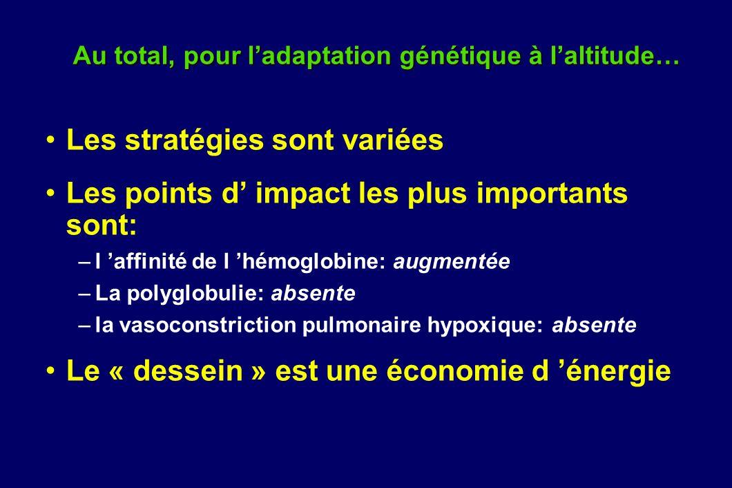 Au total, pour ladaptation génétique à laltitude… Les stratégies sont variées Les points d impact les plus importants sont: –l affinité de l hémoglobi