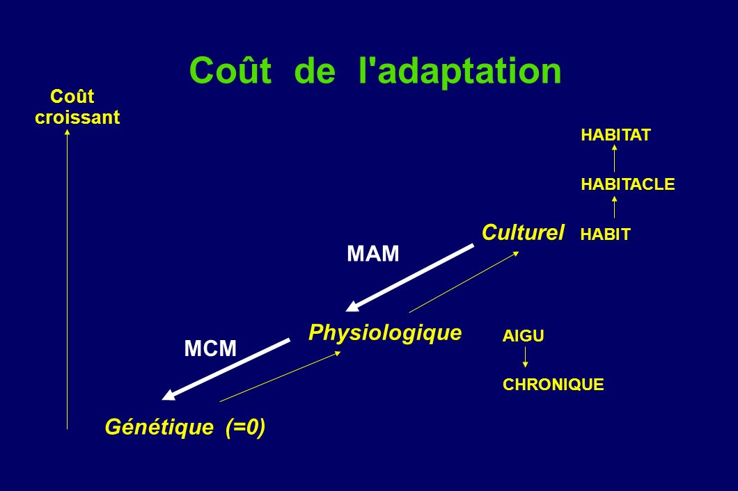 Coût de l'adaptation Culturel HABIT Génétique (=0) HABITACLE HABITAT Physiologique AIGU CHRONIQUE Coût croissant MAM MCM