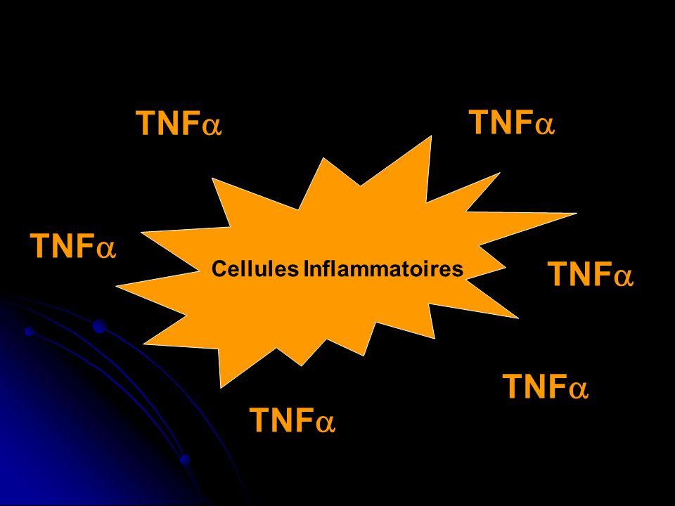 Cellules Inflammatoires TNF