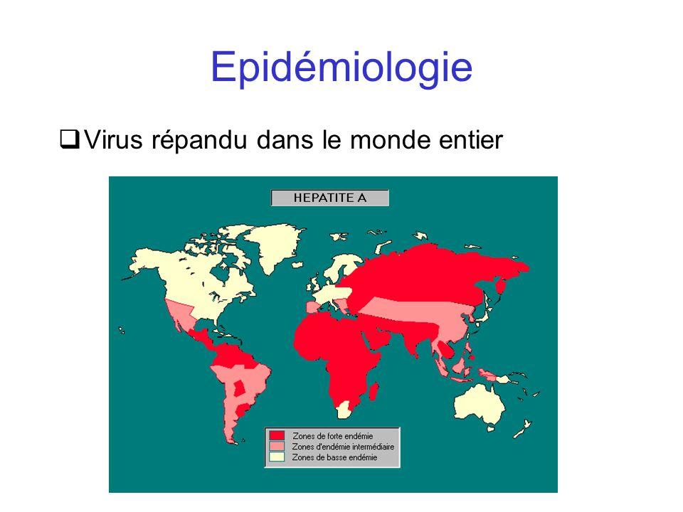 Epidémiologie Virus répandu dans le monde entier