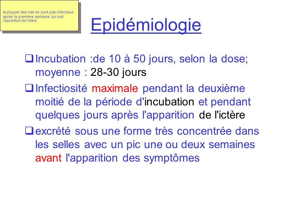Epidémiologie Incubation :de 10 à 50 jours, selon la dose; moyenne : 28-30 jours Infectiosité maximale pendant la deuxième moitié de la période d'incu