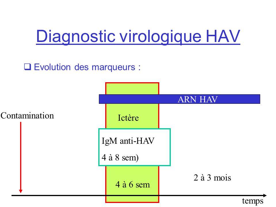 Diagnostic virologique HAV Evolution des marqueurs : Ictère 4 à 6 sem IgM anti-HAV 4 à 8 sem) temps ARN HAV Contamination 2 à 3 mois