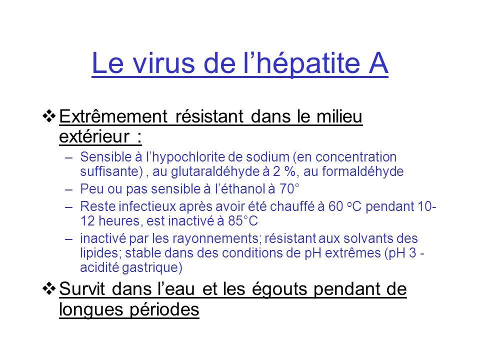 Le virus de lhépatite A Extrêmement résistant dans le milieu extérieur : –Sensible à lhypochlorite de sodium (en concentration suffisante), au glutara