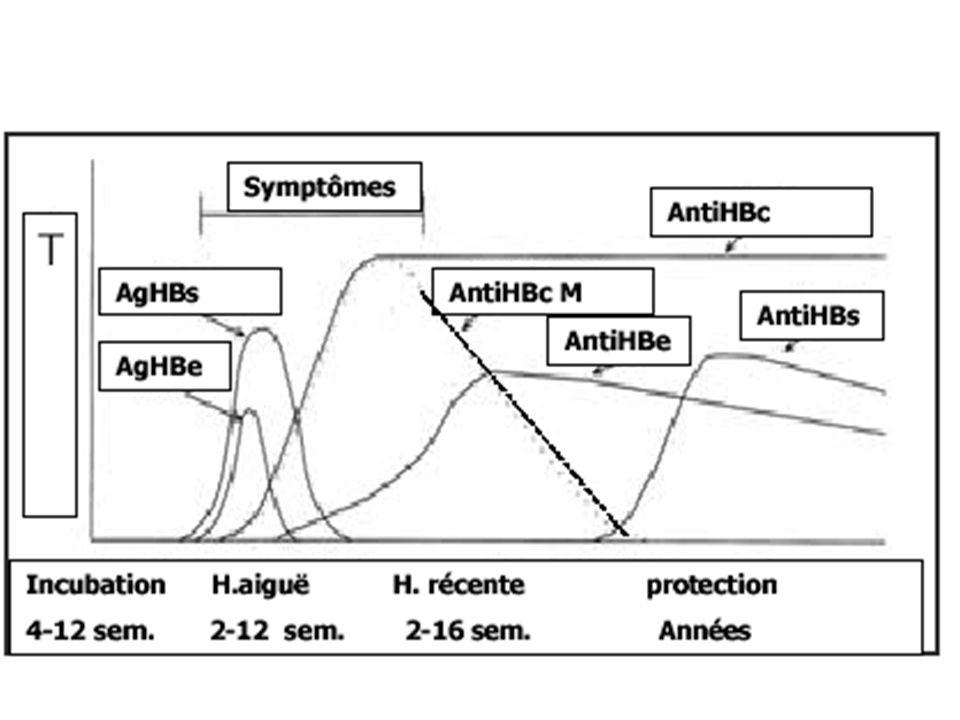 Histoire naturelle : adulte Infection VHB Asymptomatique 60-70 % Guérison Porteur Chronique 6-10% Symptomatique 30-40 % Guérison Maladie chronique du foie Hospitalisation 5% Décès 1%