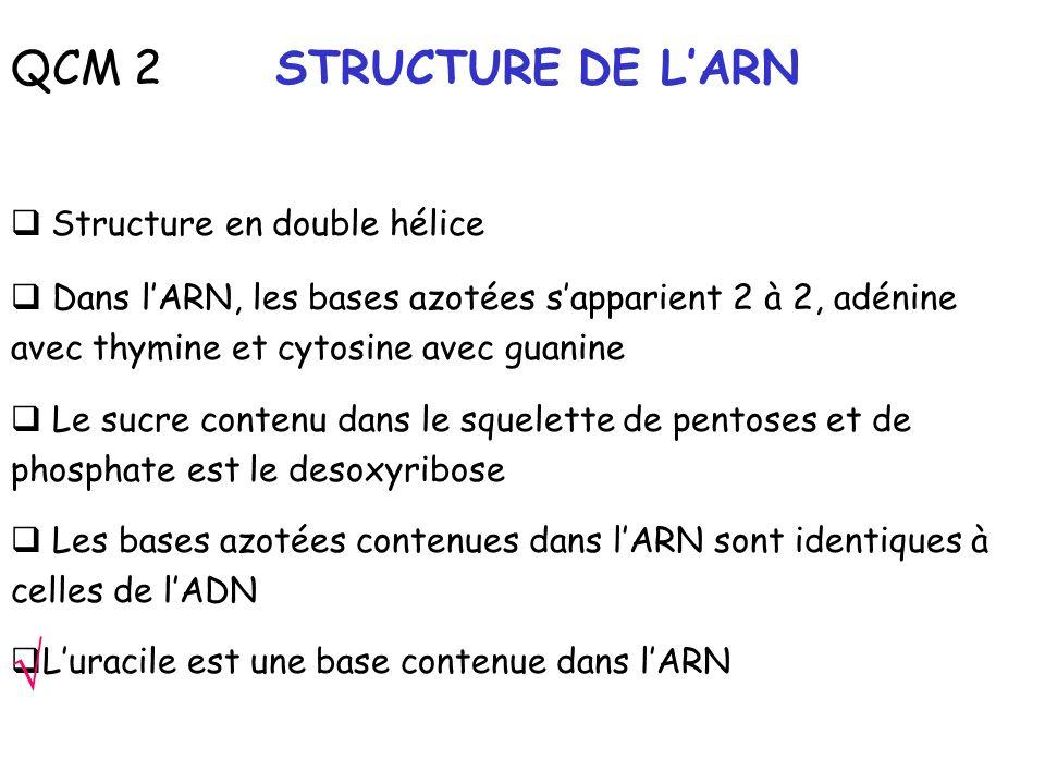 QCM 2 STRUCTURE DE LARN Structure en double hélice Dans lARN, les bases azotées sapparient 2 à 2, adénine avec thymine et cytosine avec guanine Le suc