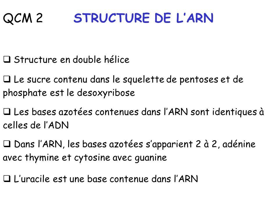 QCM 2 STRUCTURE DE LARN Structure en double hélice Le sucre contenu dans le squelette de pentoses et de phosphate est le desoxyribose Les bases azotée