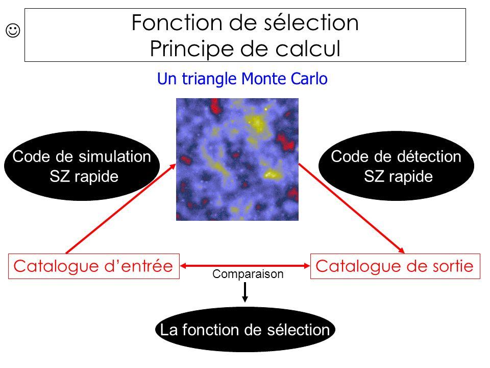 Catalogue dentréeCatalogue de sortie Code de simulation SZ rapide Comparaison La fonction de sélection Un triangle Monte Carlo Code de détection SZ rapide Fonction de sélection Principe de calcul