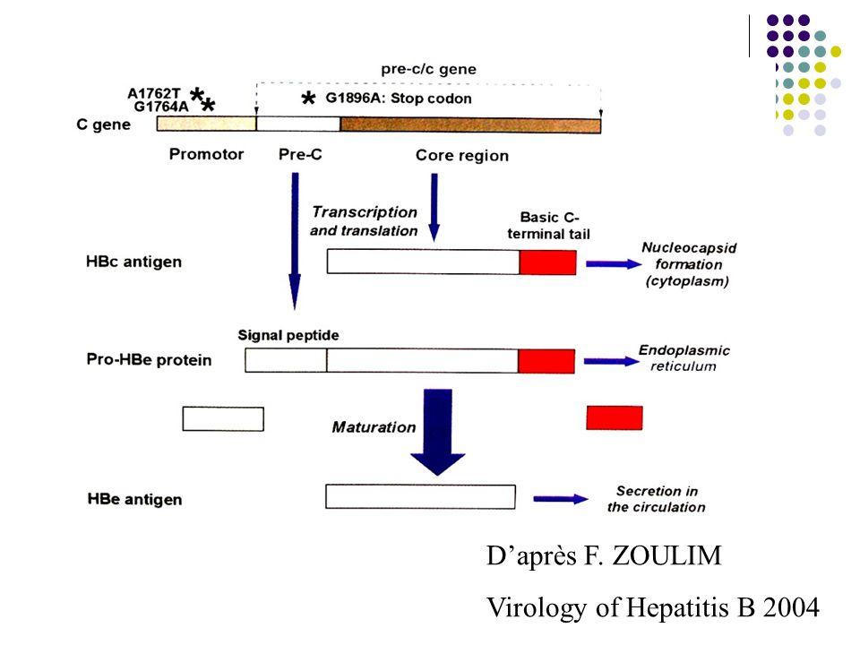 Daprès F. ZOULIM Virology of Hepatitis B 2004